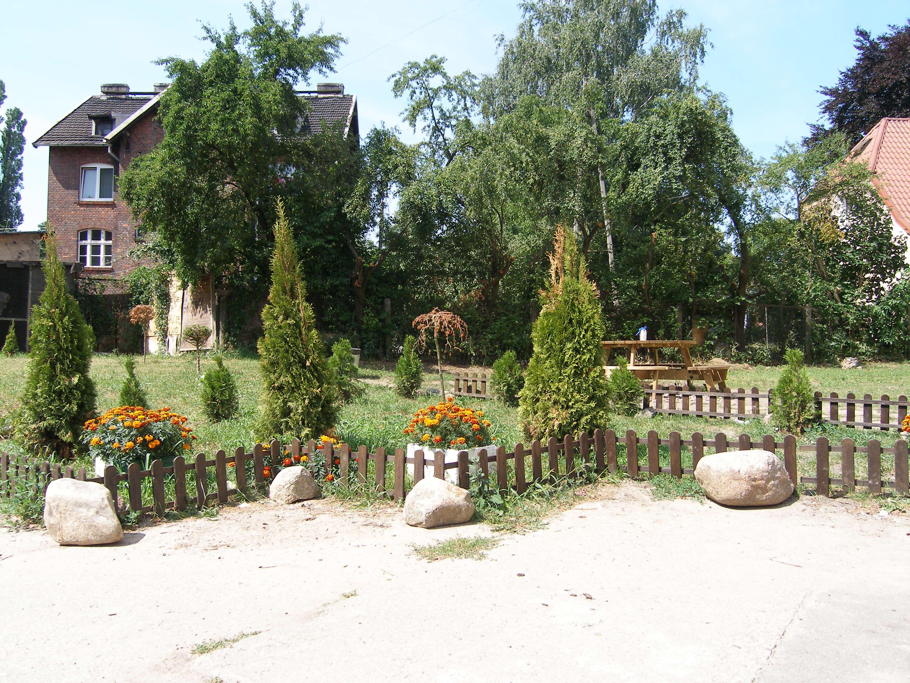 zdjęcie podwórka z programu Wspólne Podwórko